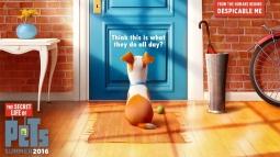 Box Office Sepekan: The Secret Life of Pets Kalahkah Ghostbusters