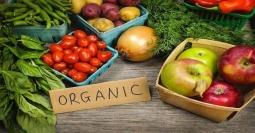 Mengejutkan! Makanan Organik Tidak Selamanya Sehat