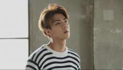 Aktris Hollywood Dituduh Numpang Beken di Ultah Sehun 'EXO'
