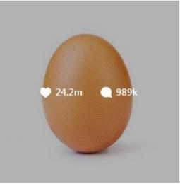 Foto Telur yang Berhasil Mengalahkan Kylie Jenner!