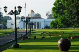 Bogor Menjadi Salah Satu Kota Dengan Udara Terbersih Di Asia