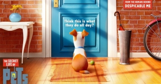 Intip Keseruan The Secret Life Of Pets